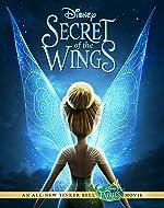 Secret of the Wings(2012)