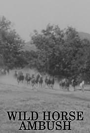 Wild Horse Ambush Poster