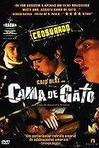 Image of Cama de Gato
