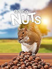 Going Nuts - Tales from the Squirrel World (2019) poster