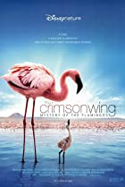 Image of The Crimson Wing: Mystery of the Flamingos