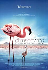 The Crimson Wing: Mystery of the Flamingos (2008) Poster - Movie Forum, Cast, Reviews