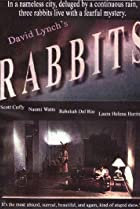 Image of Rabbits