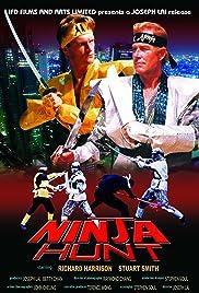 Ninja Hunt Poster