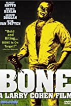 Image of Bone