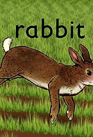 Rabbit(2005) Poster - Movie Forum, Cast, Reviews
