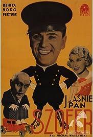 Jasnie pan szofer Poster