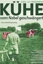 Kühe vom Nebel geschwängert Poster