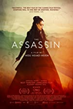 The Assassin(2015)