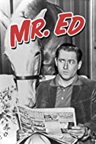 Image of Mister Ed