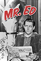 Primary image for Mister Ed