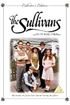 Image of The Sullivans