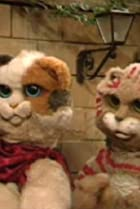 Image of Pacha et les chats