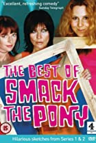 Image of Smack the Pony
