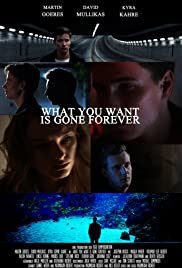 What You Want Is Gone Forever Poster