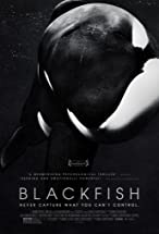 Primary image for Blackfish