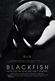 Blackfish (2013) Poster - Movie Forum, Cast, Reviews