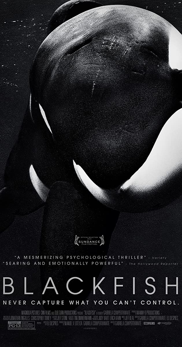 Blackfish (2013) – Movie HD Wallpapers