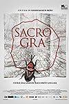 Doc & Film closes Us on Violette, Sacro Gra adds sales