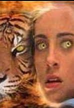 Wild Kat