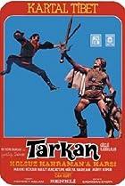 Image of Tarkan güçlü kahraman