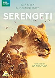 Serengeti - Season 2 poster