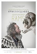 Rams(2015)