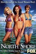 Shark (2005) Poster