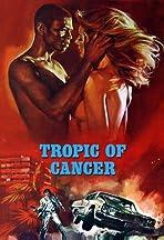 Al tropico del cancro