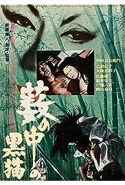 Watch Movie Kuroneko (1968)
