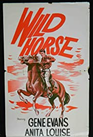 The Wild Horse Poster