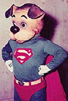 Image of The Adventures of Superpup