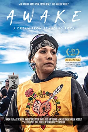 Permalink to Movie Awake, a Dream from Standing Rock (2017)