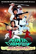 Image of Ninja Champion