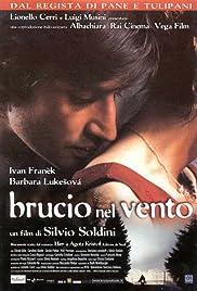 Brucio nel vento(2002) Poster - Movie Forum, Cast, Reviews