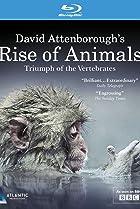 Image of Rise of Animals: Triumph of the Vertebrates