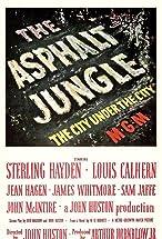 Primary image for The Asphalt Jungle