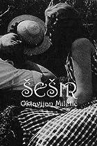 Image of Sesir