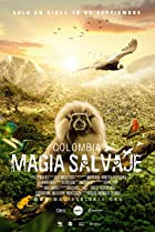 Image of Colombia magia salvaje