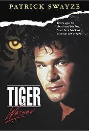 Tiger Warsaw Poster