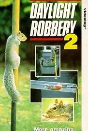 Daylight Robbery 2 Poster
