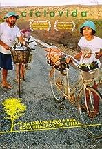 Ciclovida: Lifecycle