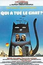 Image of Il gatto