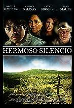 Primary image for Hermoso Silencio