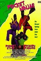 Image of Pocket Ninjas