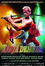 Ninja Dragon