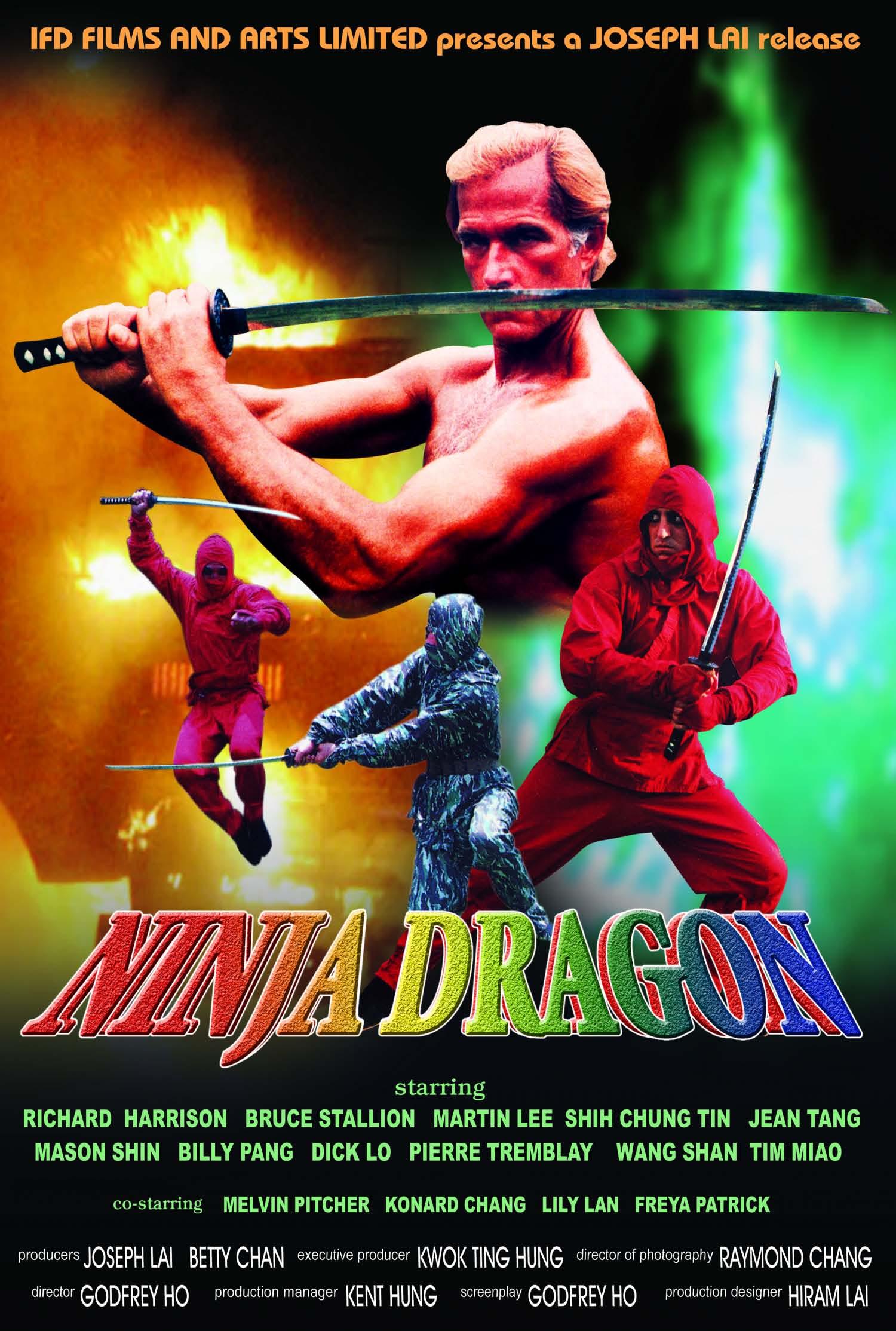 image Ninja Dragon Watch Full Movie Free Online