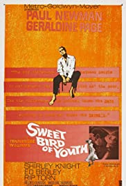 Sweet Bird of Youth (1962) Poster - Movie Forum, Cast, Reviews