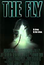 Primary image for The Fly