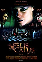 Félis Catus
